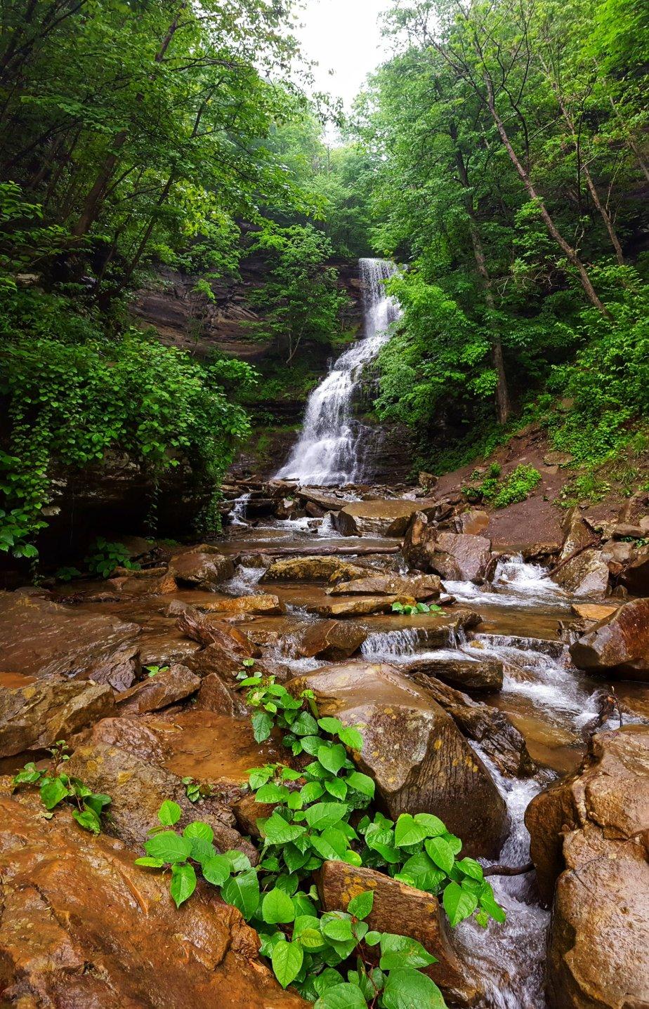 Cathedral Falls, A NaturalSanctuary