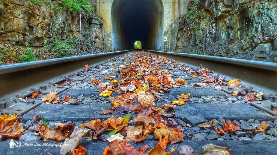 Kimberly Tunnel #2