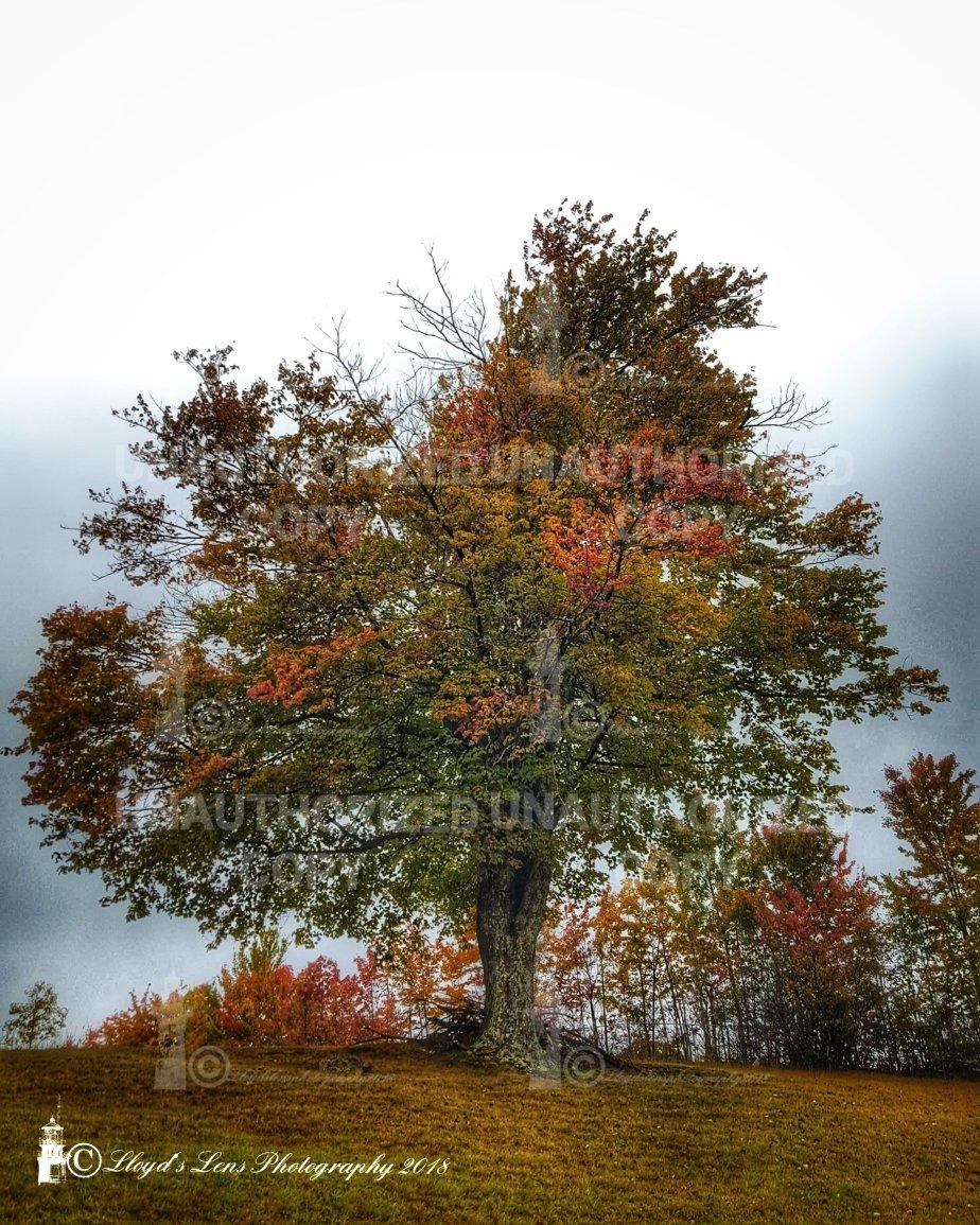 October Winds