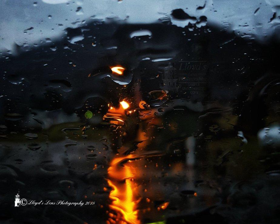 A Bright Spot On A RainyMonday