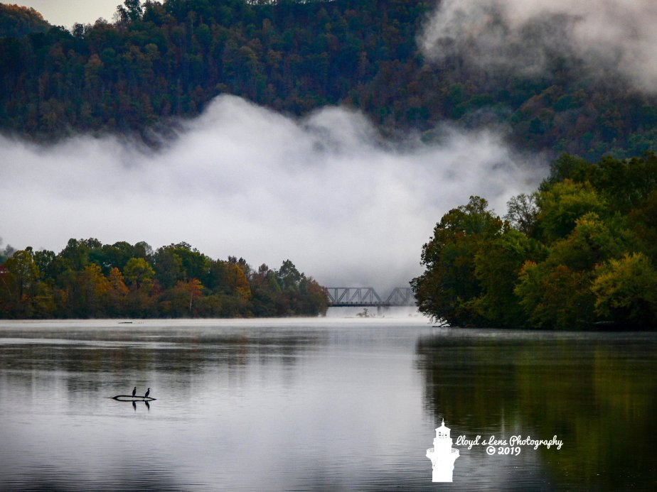 A Mist Covered Morning On ThreeRivers