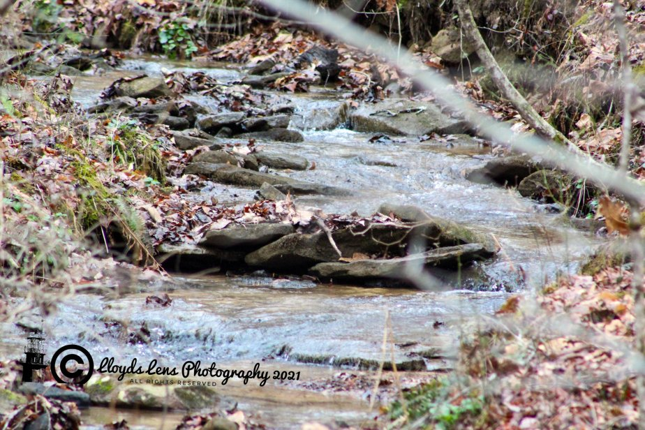 A Conversation With The Babbling Brook