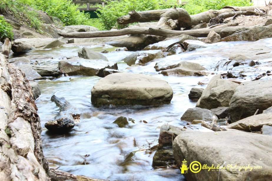 A Creek To PlayIn